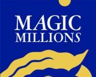 Shea @ the Magic Millions 2015