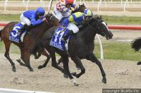 Sports Writer makes headlines at Pakenham