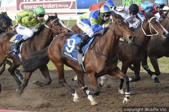 Royal lands at huge odds at Geelong