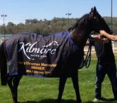 To Infinity after winning at Kilmore.JPG