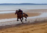 Teretoa working on the beach.JPG