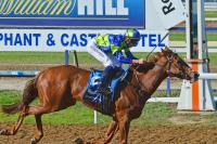 Better Strike Wins At Geelong