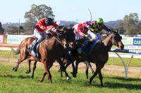 Scapa Cove Wins at Wondonga