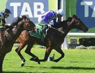 Barefoot Tycoon Maiden Win for Balmoral Lodge