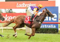 IMPERIAL EMPRESS REIGNS SUPREME AT SALE