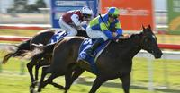 Ocean Embers Triumphs Again  Group 3 Bow Mistress Stakes Hobart