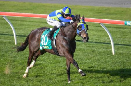 Bairnsdale preview Oct 8