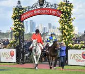 Ocean storms to victory on Cup Day