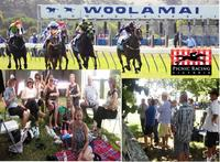 A DAY OUT AT THE WOOLAMAI PICNIC RACES