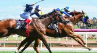 Cavalero takes Flemington