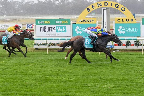 Ocular Bounces Back With Superb Win