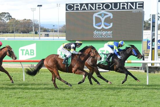Great two days for Geelong owners