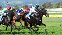 Another double strike at Morphettville Parks