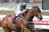 Yet another spring victory for Almighty Bullet