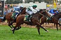 Wakeel storms to first win for Hyam at Oakbank