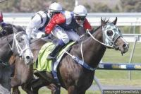 Last Bullet fires first-up at Morphettville