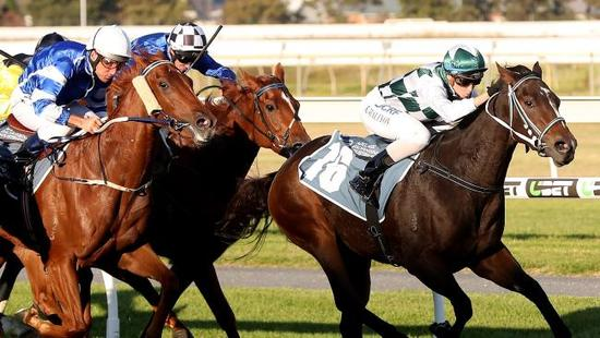 Vienna Miss Wins The Adelaide Guineas
