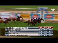 BELLA SOPHIA WINS & OUR LILY THIRD AT BAIRNSDALE