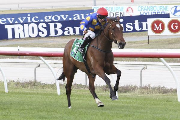 LOPARTEGA DOMINANT WINNER AT SANDOWN