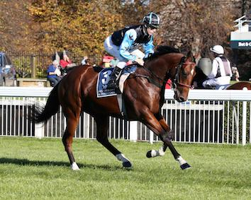 SON OF MAHER EARNS GROUP1 TILT