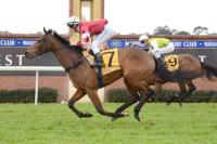 Lawton Joseph on trial at Wagga | Andrew Dale Racing