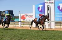 Veteran galloper retired | Andrew Dale Racing
