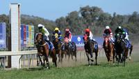 Arthur Porrit places, French Politician improving | Andrew Dale Racing