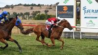 LRD and LJ set for Albury | Andrew Dale Racing