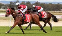 Lawton Joseph set for big summer after home victory | The Border Mail