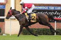 Two on the trot for Arthur Porrit  | Andrew Dale Racing