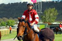 Five runners for ADR | Andrew Dale Racing