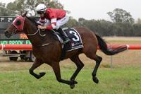 Biding Time salutes at Narrandera | Andrew Dale Racing