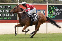 Framework secures second win | Andrew Dale Racing