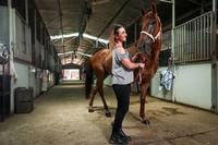 Albury trainer Andrew Dale could farewell Little Red Devil | The Border Mail