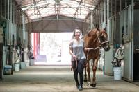 Little Red Devil on the move up north after Border trainer sells | The Border Mail