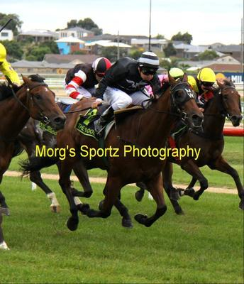 Tessie flys at Flemington and First Base breaks his Maiden