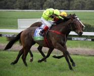 A City Girl Wins At Casterton