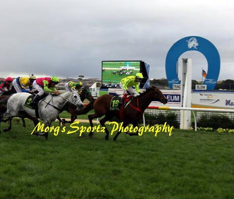 Uxorious Wins The Wangoom Handicap In Gutsy Style