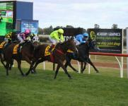 Uxorious Wins The Golden Topaz At Swan Hill Carnival