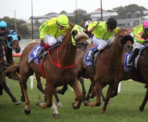 Luckyi'mbarefoot Wins At Warrnambool