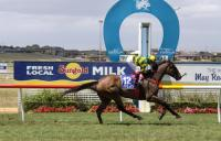 Stable Gets A Double At Warrnambool Summer Carnival