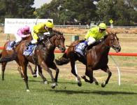 Forever Here Dead Heats For First In Close Finish At Werribee