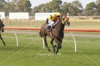Pyrenees Express Good Strong Win at Werribee