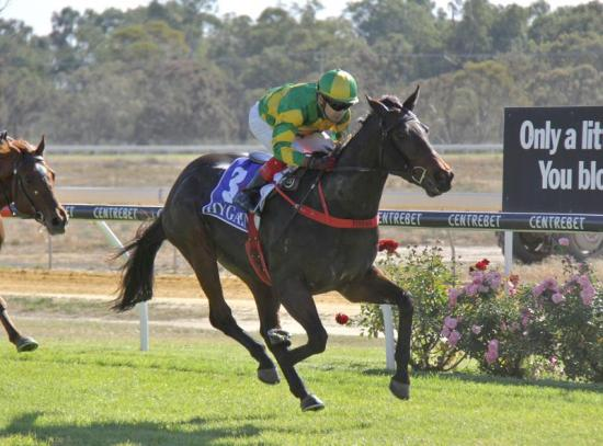 3 Winners For The Stable At Mildura Carnival