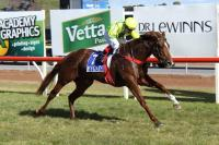 Two winners for the stable at the Swan Hill Carnival