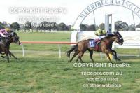 Bird Rock Wins Her Maiden at Werribee