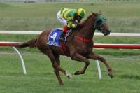 Two Wins In A Row For Flying Hussler