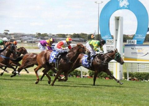 Stable Gets A Treble At Warrnambool