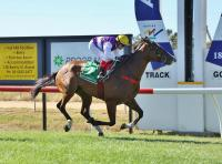 Another Win For Ardroy