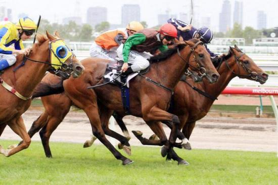 Turnitaround Spins A Win At Flemington